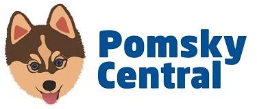 Pomsky Central - The World's #1 Resource on the Pomsky! Learn